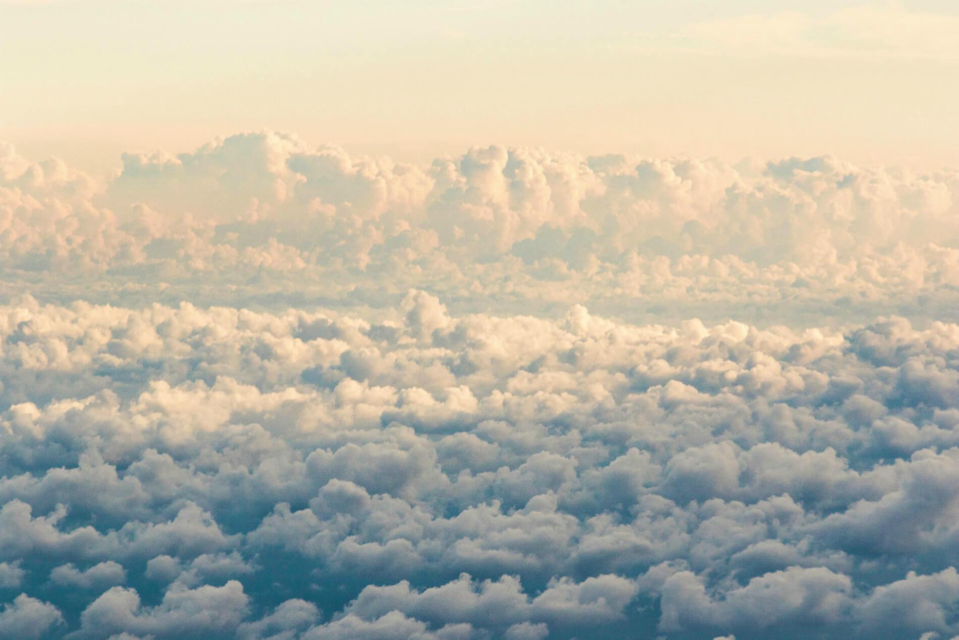 8 худших соседей в самолете: собери всех