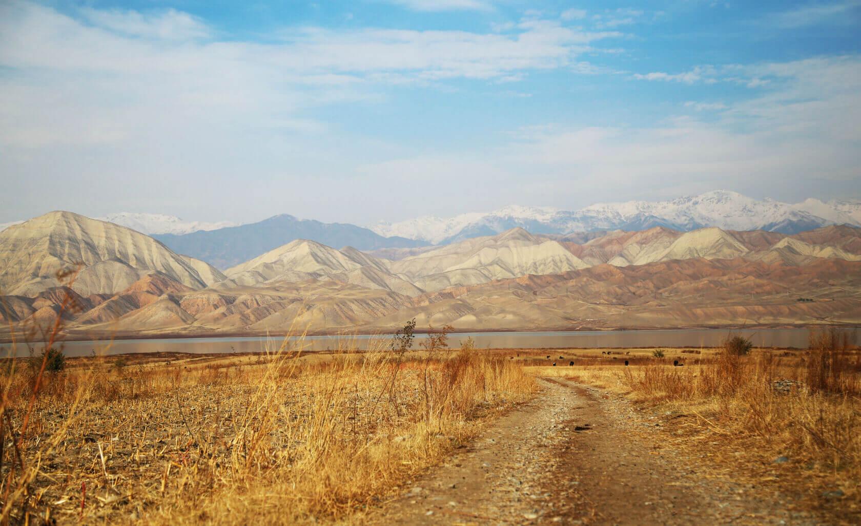 Пил в маршрутке и спал с волками: шальная поездка в Киргизию