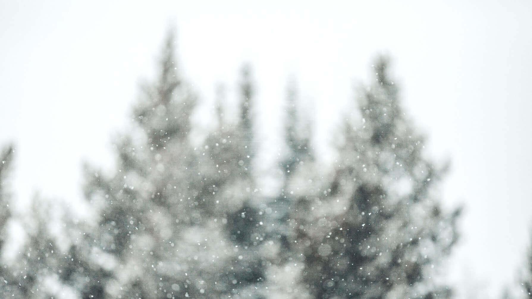 Тройной бэкфлип и родео: сколько стоит покататься на лыжах в Финляндии