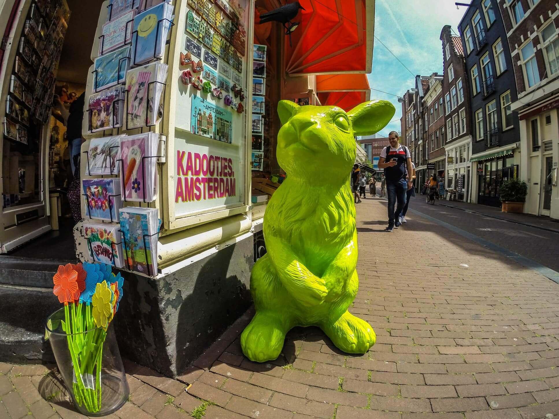 Амстердам круглый год: чем заняться в городе с января по декабрь