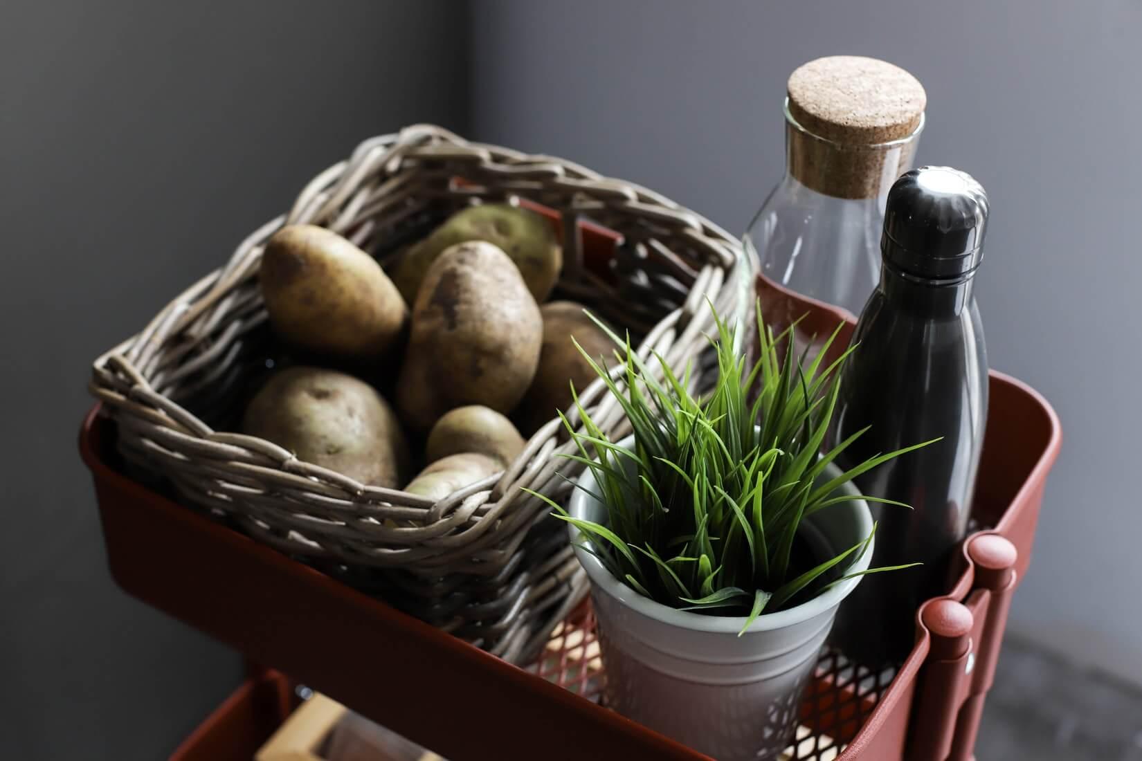 Дед запретил ехать на картошку: как вырастить картошку дома